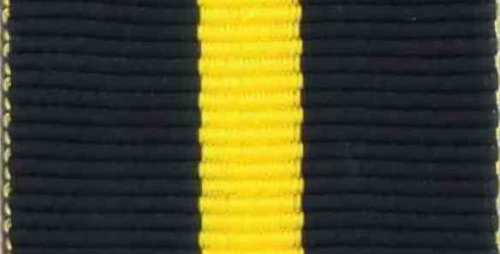 256 - US-Marine - US-Navy Distinguished Service