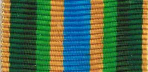 790 - Armed Forces Service Medal