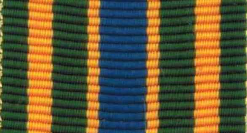 794 - NCO Prof. Development Ribbon