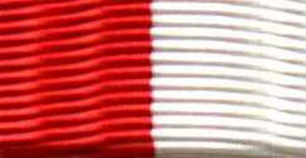 146-Band - Band 25 mm für Grundzeichen Bandschnalle rot-weiß